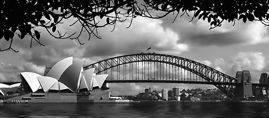 Two Icons - Sydney Harbour Bridge by Hans Kawitzki