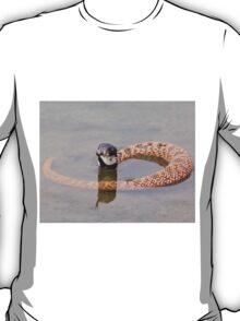Shield Nose Snake - Dangerous Beauty T-Shirt