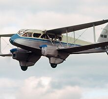 De Havilland DH-89A Dragon Rapide by Ern Mainka
