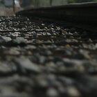 Train Tracks  by Erin  Herlihy
