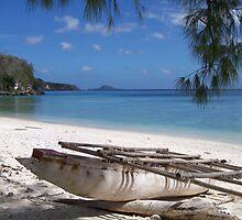 Lelepa Island, Vanuatu by SCPhotos