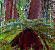 Psychedelic RainForest Series # 8 - Yarra Ranges National Park , Marysville Victoria Australia by Philip Johnson