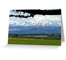 The Grazers View.. Mossburn Dairy Farm - NZ Greeting Card