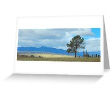 Awaiting the herd - The High Country, Victoria Australia Greeting Card