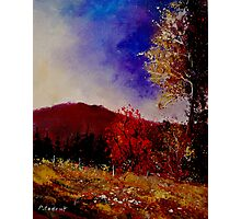 Fall colors 450108 Photographic Print