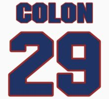 National football player Harry Colon jersey 29 by imsport