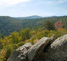 Rock View Shenandoah by andykazie