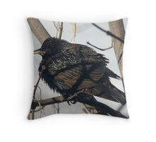 Winter bird #2 Throw Pillow