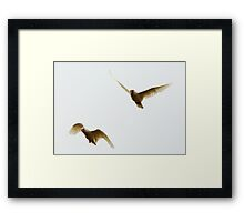 Flight Squadron Framed Print