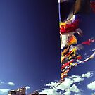 Leh castle and prayer flags by logomomo
