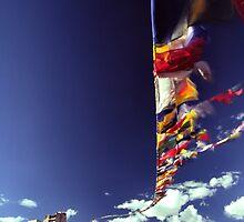 Leh castle and prayer flags by logomomo