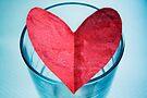 I Give You My Heart by sandra arduini