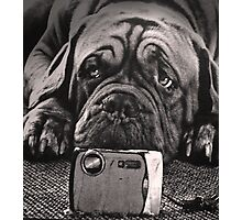 Self pawtrait  Photographic Print