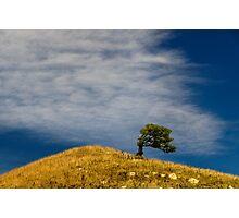 Hill Photographic Print