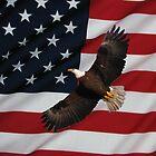 Liberty by Brad Sumner