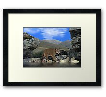 NA696-Water Hole Framed Print