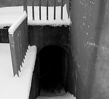 Snowy Steps by Sandy  McClearn