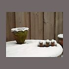 Flowerpot in winter by Robert Elfferich