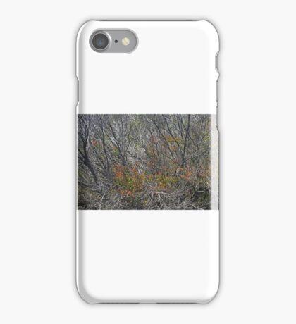 Regeneration iPhone Case/Skin