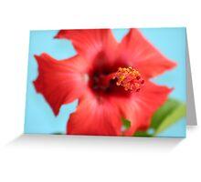 Red Island Flower Greeting Card