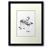 Flamingo Spectacles Drawing Framed Print