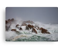 Storm, West Coast, Tasmania Canvas Print