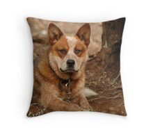 Handsome is as handsome does Throw Pillow