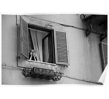 Italian Woman Poster