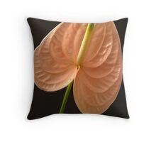 Peach Anthurium on black background. Throw Pillow