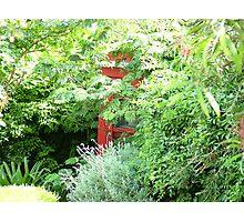 tropic telephone Photographic Print