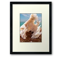 Dead sea salt 3	 Framed Print