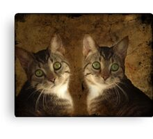 The Perfect Twin Canvas Print
