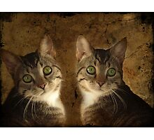 The Perfect Twin Photographic Print