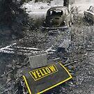 Yellow by © Joe  Beasley IPA