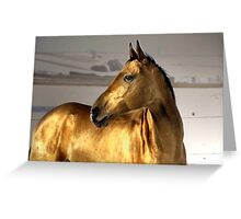 evening gold Greeting Card