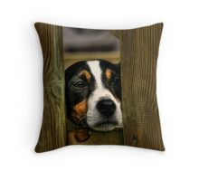 If Only.... Throw Pillow