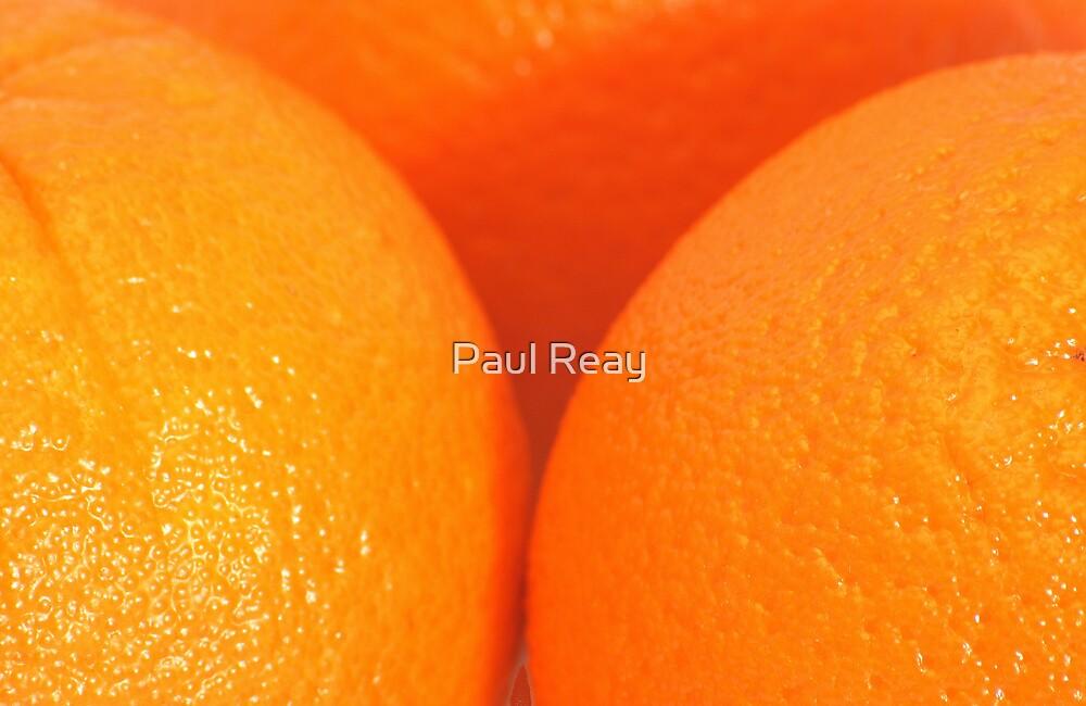 Zest by Paul Reay