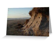Windswept beach Greeting Card