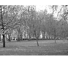 Hyde Park March Photographic Print