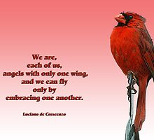 Angels with one wing . . . by Bonnie T.  Barry