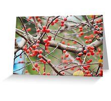 berries. Greeting Card