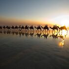 Cable Beach Camels by Peter Hodgson