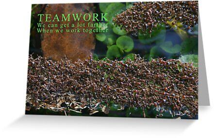 Teamwork by MMerritt