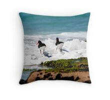 Pied Oyster Catchers, Friendly Beaches, Tasmania Throw Pillow