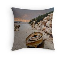 Last trip	 Throw Pillow