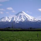 Mt. Egmont, NZ by ajyenney