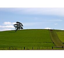 Green Hill Photographic Print