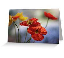 Icelandic Poppies Greeting Card