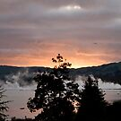 Sunrise in Rotorua by supermimai