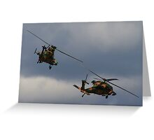 Flying in Pairs Greeting Card